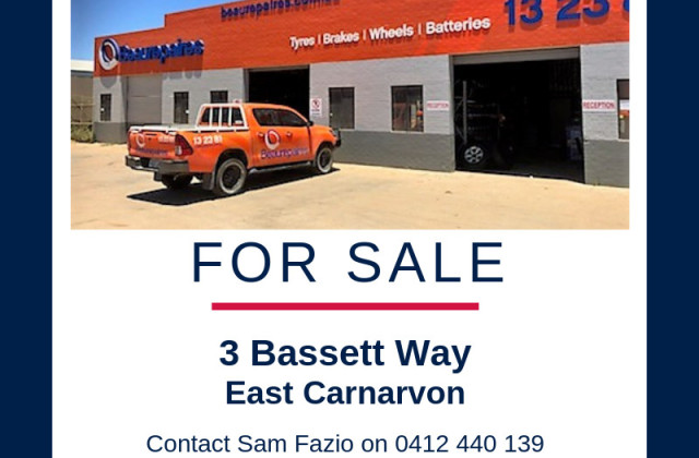 3 Bassett Way, EAST CARNARVON WA, 6701